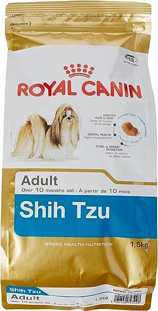 Fur verkauf shih tzu adult